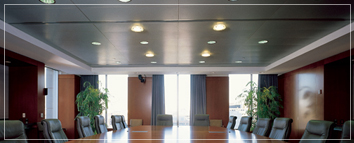 Specialty Ceiling Panels
